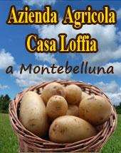 Patata del Montello Carantina